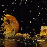 Smashing pumpkins in super slow motion